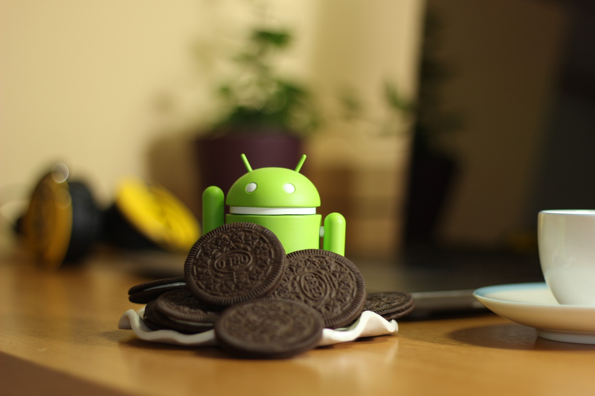 Android droid and Oreos